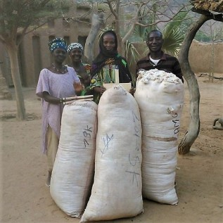 Distribution de coton 15 mars (2)