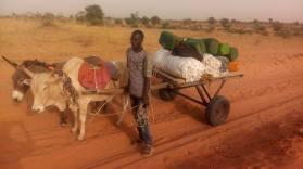transport de coton