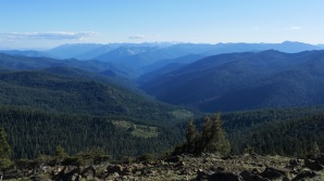 Shasta Wilderness